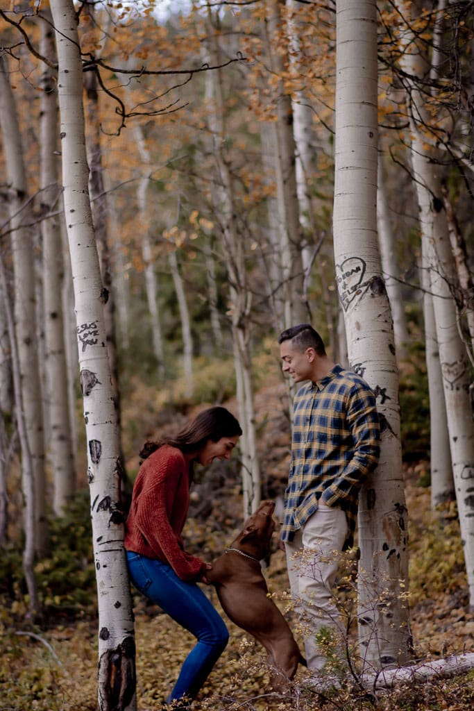 Laughing couple plays with their happy dog among Aspen trees in Colorado