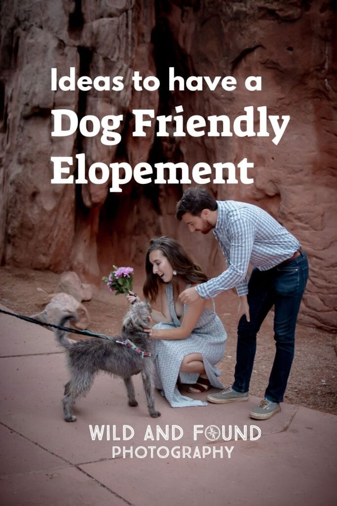 Couple looking at their dog during their elopement in Garden of the Gods in Colorado
