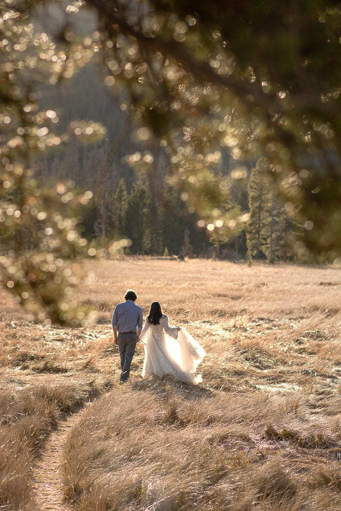 Bride and groom walk through a path in a field with pine trees in the background