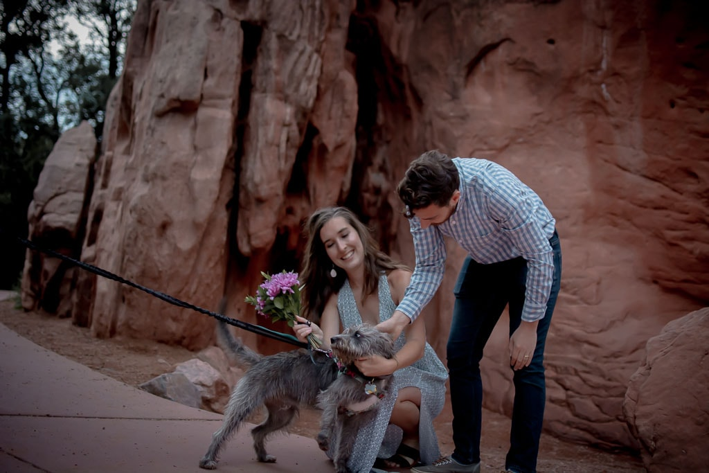 Eloping couple petting their dog in Garden of the Gods in Colorado Springs