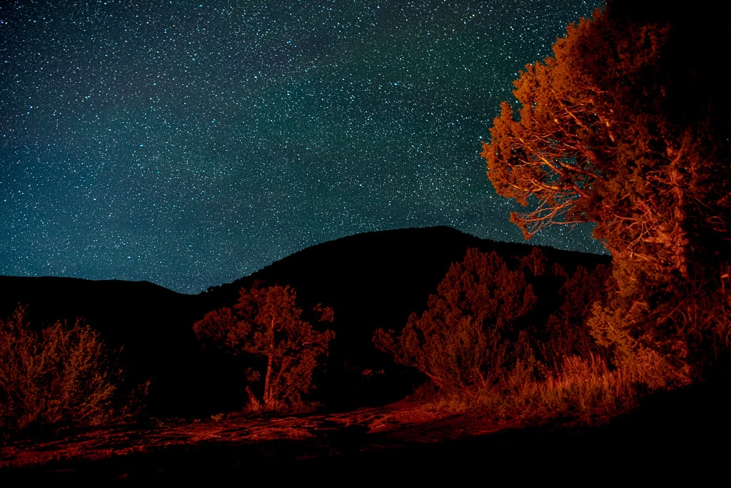 Starry night sky and trees that are being lit red and orange from the light of a campfire