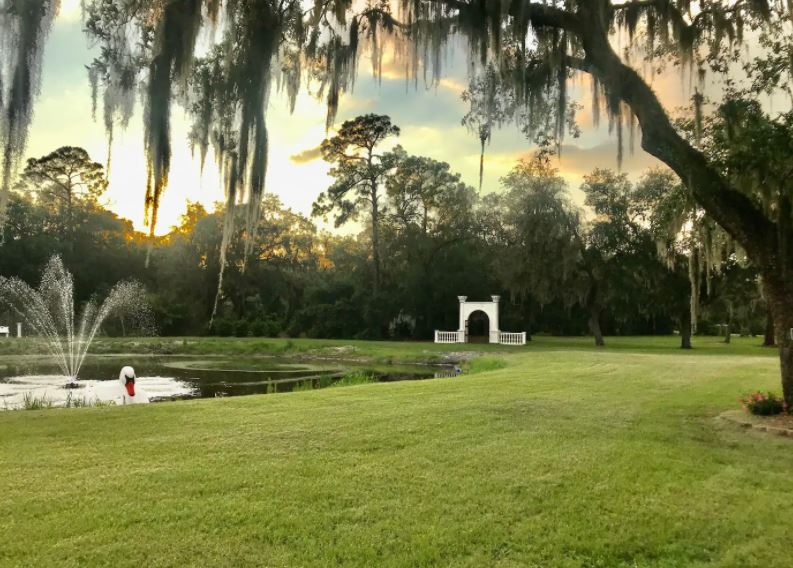 Florida Airbnb lawn with trees with Spanish moss and a pond with a fountain