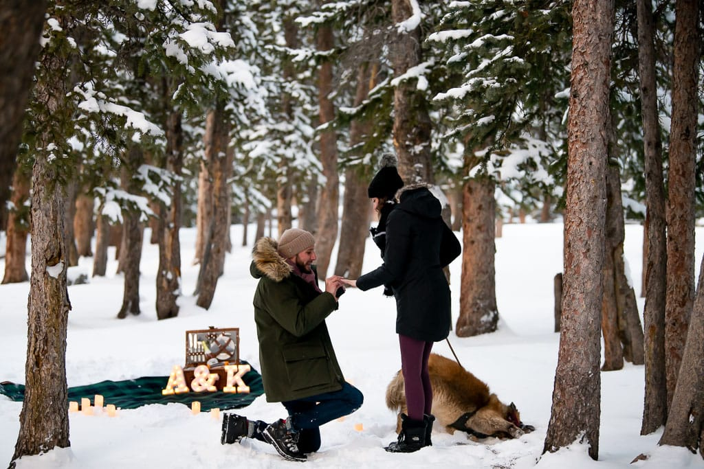 Man proposing to woman in a snowy pine forest with a picnic in the background and a dog rolling in the snow