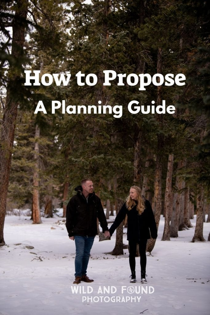How to Propose Planning Guide cover image