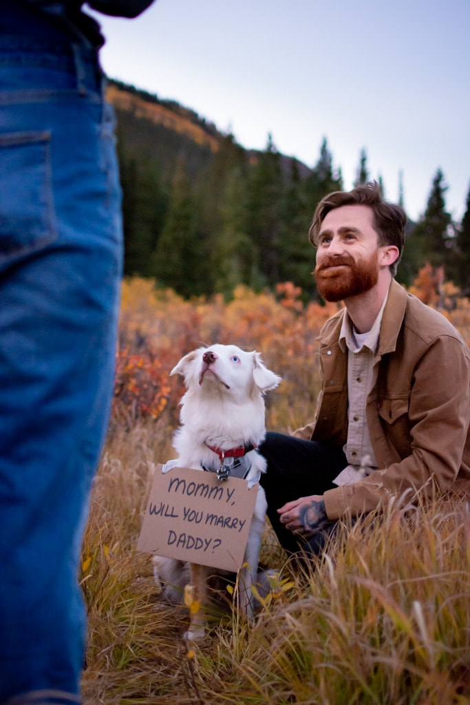 """Man proposing to women with their dog and a sign that reads """"Mommy Will You Marry Daddy?"""" in a field with trees and mountains in Colorado"""